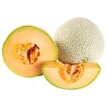 Musk Melon - Kg
