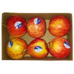 Apple Royal Gala (6 Piece Pack)