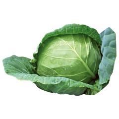 Cabbage 1 pc